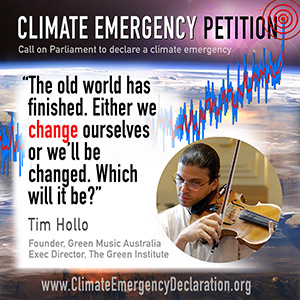 Tim Hollo